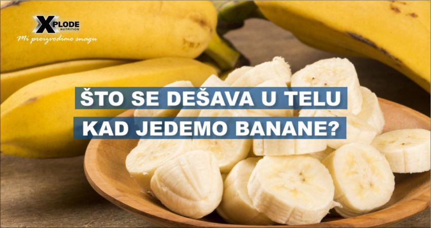 Šta se dešava u telu kad jedemo banane? - Xplode Nutrition