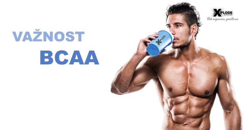 Važnost BCAA aminokiselina - Xplode Nutrition