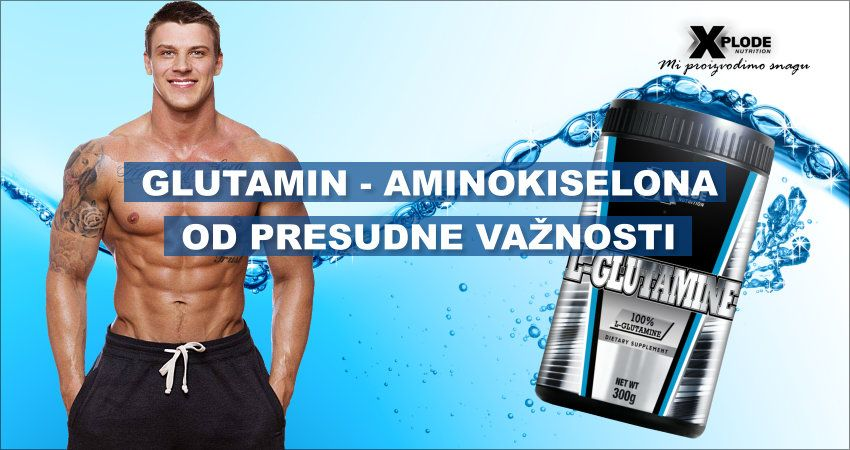 Glutamin – aminokiselina od presudne važnosti | Xplode Nutrition